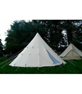 Cort Tipi 600 Ultimate