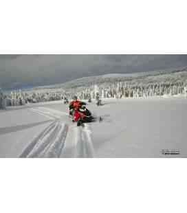 Ture de Aventură cu Snowmobile - 4 zile