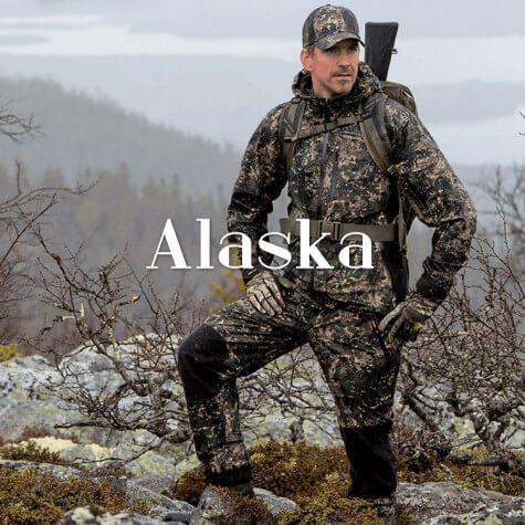 Alaska Elk